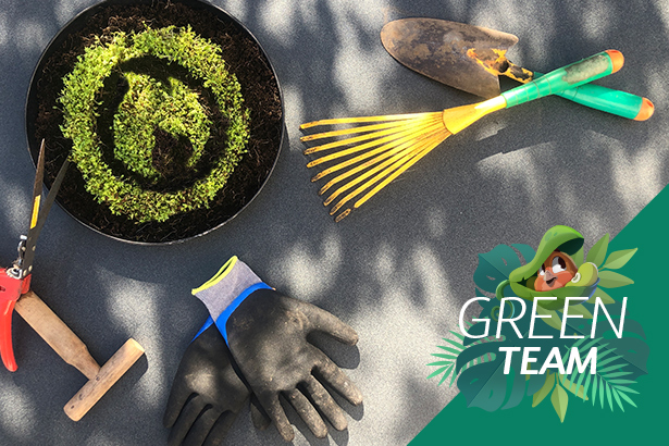 Behind the Scenes: Green Team
